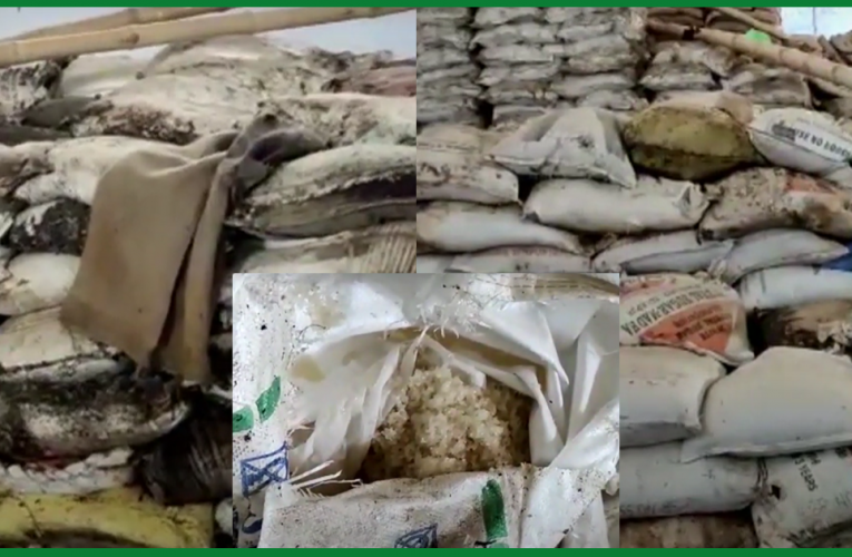 देवघर: गोदाम में बर्बाद हुआ 450 क्विंटल चीनी, डीसी ने दिए जांच के आदेश..