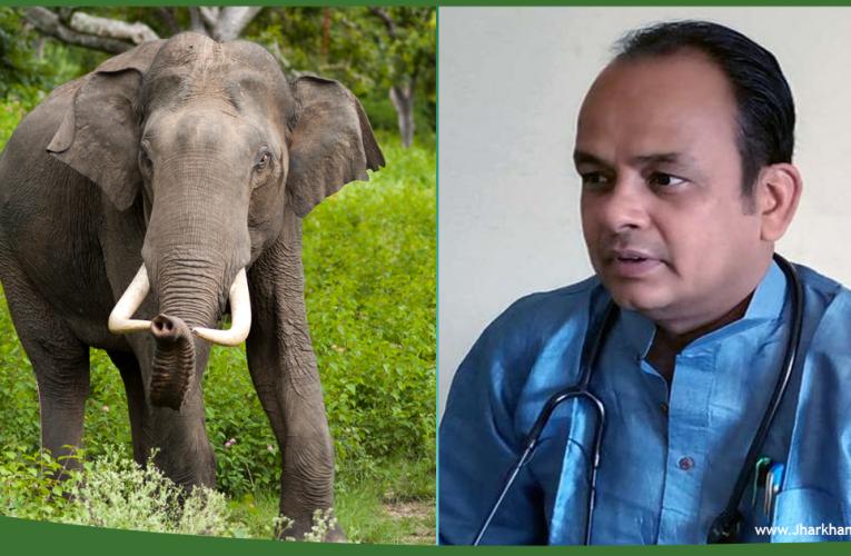 हाथी के डर से बिगड़े विधायक डॉ इरफान अंसारी के बोल, लोगों को हाथी को मारने तक की सलाह दे डाली..