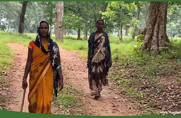 पलामू टाइगर रिजर्व की सुरक्षा इन दो धाकड़ बहनों के ऊपर, टांगी और कुल्हाड़ी लेकर करती है जंगल की सुरक्षा..